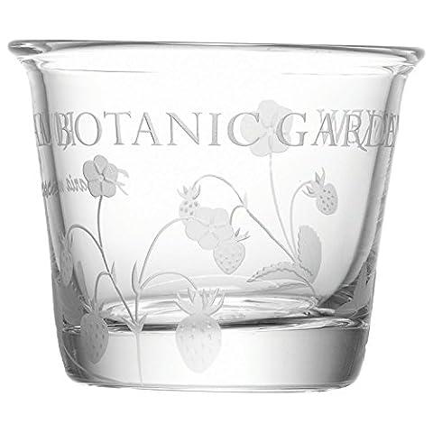 Royal Botanic Kew Teelicht - Packung Mit
