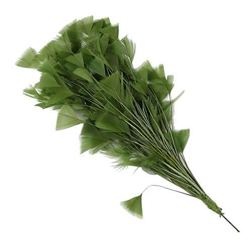 P Prettyia Bunter Natur Dekoration Hahnfeder fasan Feder Pfauenfedern Kostüm Feder Fasanenfedern Hutfeder - Grün