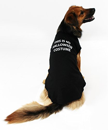 lloween-Kostüm Hund Shirt, Medium ()