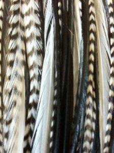 Beste Qualität Natürlich Echt Hahn Feder Haar Extension In 5 Verschiedene Farben Von (Qualität Kostüme Beste)