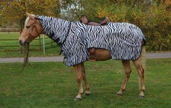 Busse Ausreitdecke Montana Zebra, 155, Zebra
