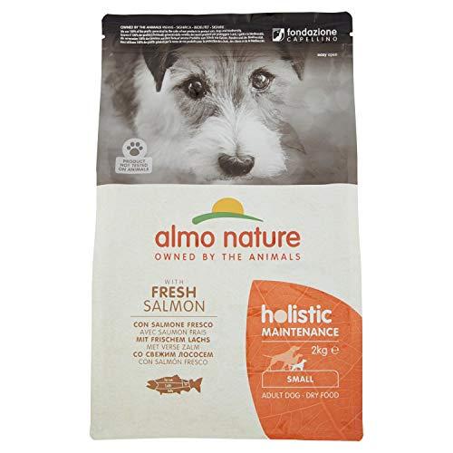 almo nature Holistic pour Adulte Petite avec du Saumon Frais, 2kg
