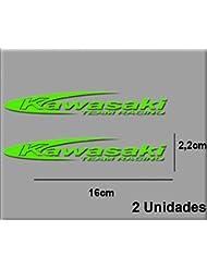 PEGATINAS STICKERS MOTO KAWA TEAM R R14 AUFKLEBER DECALS AUTOCOLLANTS ADESIVI (VERDE/GREEN)