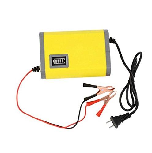 Caricatore intelligente automatico di batteria 12volts-6