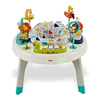 Fisher Price - Mattel Fvd25 2'Si 1 Arada Aktivite Merkezi