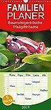 Baumsteigerfrösche. Pfeilgiftfrösche - gefährlich schön - Familienplaner hoch (Wandkalender 2019 , 21 cm x 45 cm, hoch): Die herrlichen und ... (Monatskalender, 14 Seiten ) (CALVENDO Tiere)