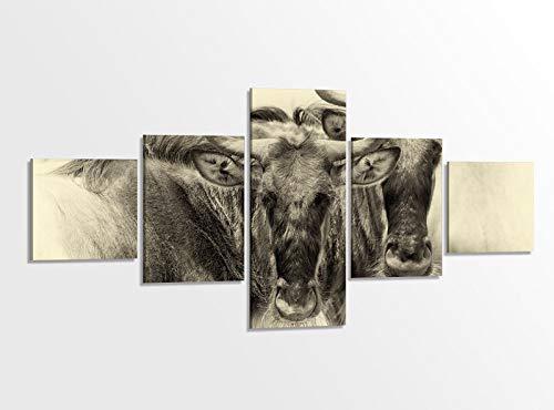 Leinwandbild 5 tlg. 200x100cm Gnu Gnus Tiere Ziege Kuh Vintage Kunst Afrika Tierwelt Bilder Druck auf Leinwand Bild Kunstdruck mehrteilig Holz gerahmt 9AB1271 (Ziegen Bilder Von)