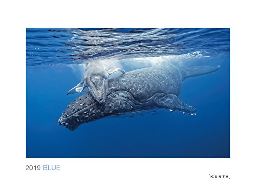 Blue 2019: Wandkalender