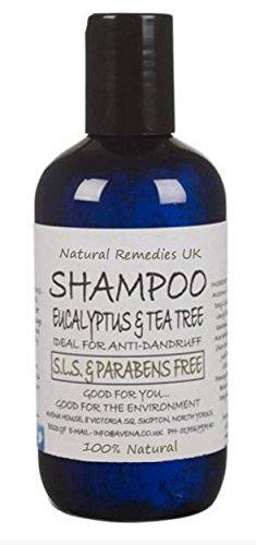 natural-shampoo-for-dandruff-prone-scalp-250ml-no-sls-parabens-with-eucalyptus-and-tea-tree-essentia