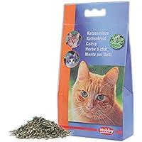 Nobby 77502 Katzenminze