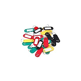Accessotech 30 x Coloured Plastic Key Fobs Luggage ID Tags Labels Keyrings with Name Cards