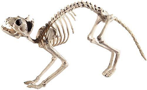 Smiffys-46913 Esqueleto de Gato, Natural, 60cmx12cmx25cm / 24inx5inx10in, Color, Applicable (Smiffy'S 46913)