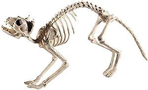 Smiffys-46913 Esqueleto de Gato, Natural, 60cmx12cmx25cm / 24inx5inx10in, Color, Applicable (Smiffy