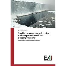 Studio termo-economico di un turboespansore su linea decompressione: Analisi in una centrale elettrica