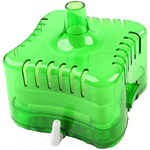Water & Wood Clear Green Plastic Case