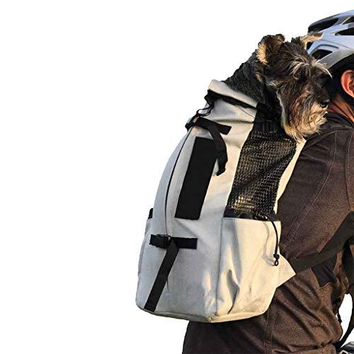 Wwjpet Haustierrucksack Pet Rucksackträger Kleine Mittlere Und Große Hunde Bequeme Rückenschulterpolster Atmungsaktive Sporthundetragetasche Reisen - Kostüm Mietvertrag