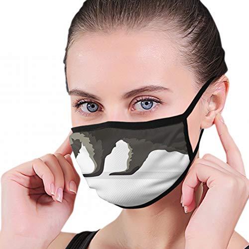 Waschbär, isoliert auf Weiss Anti-Atemschutzmaske Atmungsaktive Verschmutzungsmasken Aktivkohlefiltration N95 Antibakterielle Gesichtsverschmutzungsmaske - wiederverwendbar, wiederverwendbar, bequem