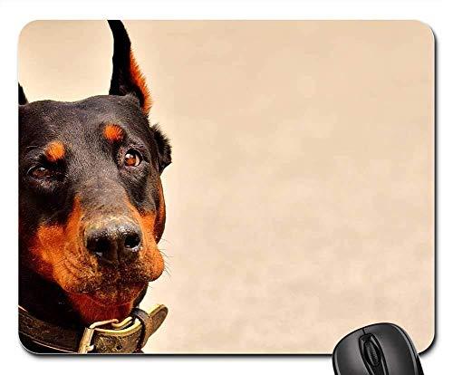 Gaming-Mauspads, Mauspad, Dobermann Hund Tierwelt Tier Hundeportrait Pet 4