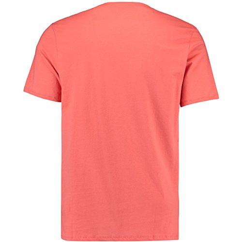O'Neill Herren Hollow Days T-Shirt powder white