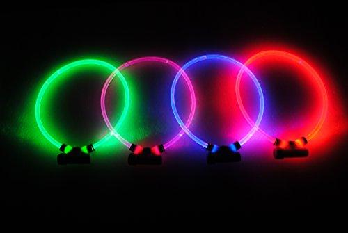 Red-Dingo-Lumitube-Illuminated-Safety-Collar