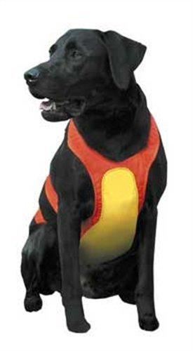Remington Brustschutz für Hunde orange, Medium, Orange