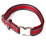 Hundehalsband, Alu-Max®, Soft Nylon, Rot mit Muster, 25-35cm, 15mm