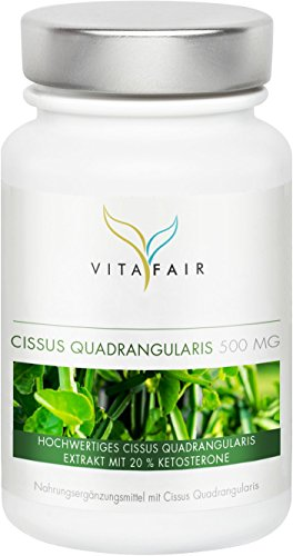 Cissus Quadrangularis Extrakt | 500mg pro Tagesdosis | 90 Kapseln | 20% Ketosterone = 100mg | Hochdosiert | Vegan | Ohne Magnesiumstearat | Made in Germany