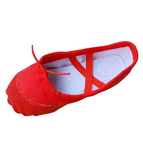Bhydry adult canvas ballet dance scarpe donna pantofole pointe ginnastica(38.5 eu,rosso)