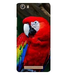 EPICCASE cute parrot Mobile Back Case Cover For Gionee Marathon M5 lite (Designer Case)