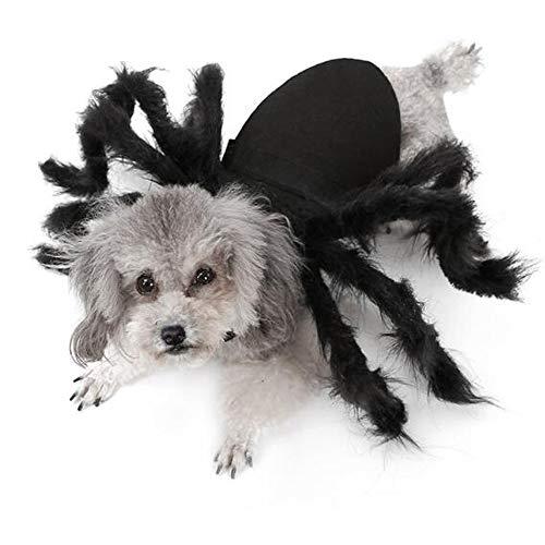Hunde Große Kostüm Spider Für - Haustierkleidung Pet, Halloween Pet Spider Kostüm, Katze Hund, Holy Day Haustierkleidung, Horror Simulation Plüsch, transformierte Ornamente, acht simulierte Spinnenbeine, geeignet für kleine Hunde,M