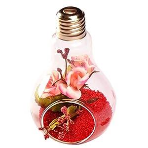 JUNGEN Florero en Forma de Bulbo Jarrón de Vidrio de Planta Flor Decoración de Escritorio, Transparente