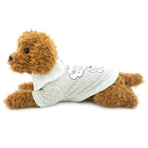 ranphy Kleiner Hund Katze Sweet Polo Kleidung Sommer Tops Hund Shirt Baumwolle Polo T-Shirt für Welpen Chihuahua T-Shirt Doggy Apparel Grün (University Billig Kostüme Halloween)