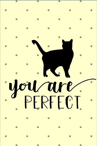 You Are Perfect: You Are Perfect - Fun Novelty Gag Gift ~ Notebook / Diary / Journal ~ Small 6