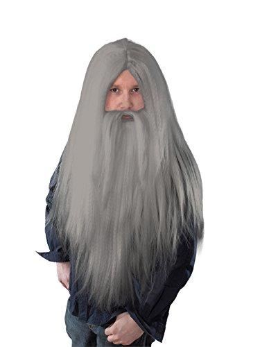 Wizard + Beard, Long Grey Wig, Fancy Dress, (Kostüme Ideen Bart)