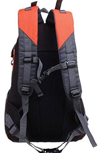 LAIDAYE Spalle Impermeabili Alpinismo Corsa Esterna Zaini Sportivi Trekking Turismo Affari Il Tempo Libero Multi-purpose Zaino Da Viaggio Orange