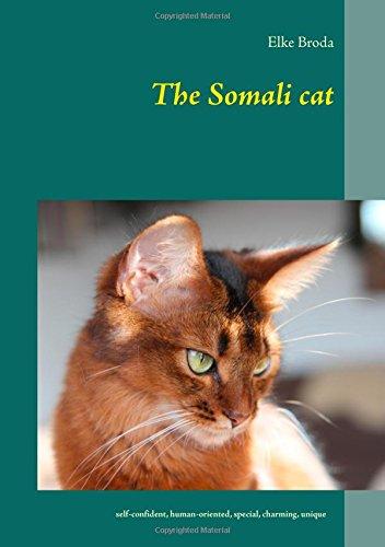 Somali-katze (The Somali cat)