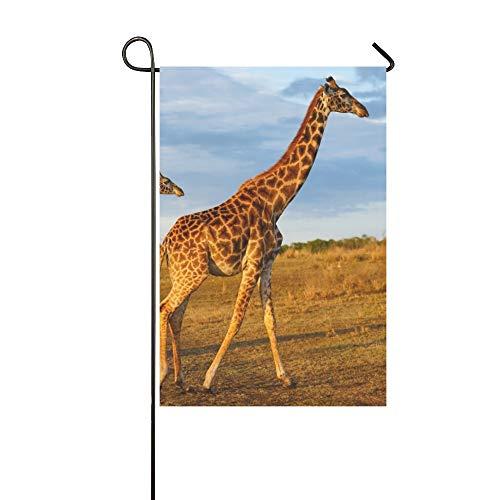Home Dekorative Outdoor Doppelseitige Masai Giraffe Kalb Masai Mara Kenia Garten Flagge, Haus Yard Flagge, Garten Yard Dekorationen, saisonale Willkommen Outdoor Flagge 12 X 18 Zoll Frühling Sommer G -