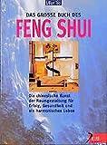 Das grosse Buch des Feng Shui: Die chinesische Kunst der Chi-Optimierung für Erfolg, Gesundheit und harmonisches Leben (Delphi bei Droemer Knaur)