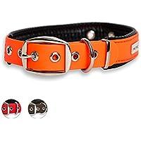 [Gesponsert]PetTec Hundehalsband aus Trioflex™ mit Polsterung, Orange, Wetterfest, Wasserabweisend, Robust