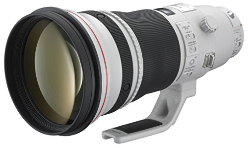 Canon EF 400mm f/2.8 L IS II USM Objektiv