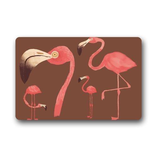ferfgrg Fashionable Design Flamingo Doormat,Indoor/Outdoor Floor Mat (L23.6