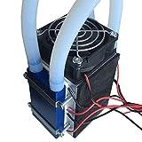 SEN Peltier Thermoelectric Frigoriferi 12 V 576W 4-Chip di Raffreddamento termoelettrico Fai-da-Te Nero