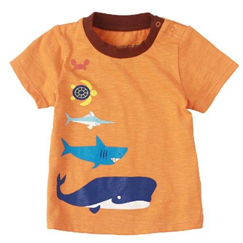 Sea World pur coton Infant Tee T-shirt pour bébé Orange 73 cm (6-12 m)