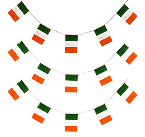 X ilfd218930m Irland Flagge Wimpelkette Pack (Bunting Irland)