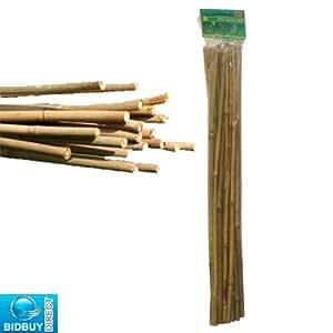 Bid Buy Direct Lot de 25 tiges de bambou pour plantes 60 cm de hauteur