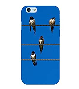 Birds Lined up on Wires 3D Hard Polycarbonate Designer Back Case Cover for Apple iPhone 6s Plus :: Apple iPhone 6s+