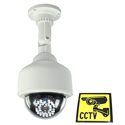 Ex-Pro® Dummy Fake PTZ Security CCTV Camera Dome with 25