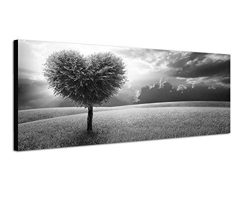 Keilrahmenbild Panoramabild SCHWARZ / WEISS 150x50cm Wiese Baum Herz abstrakt Wolkenhimmel