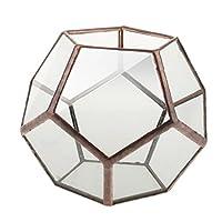 Mini Glas Terrarium Geometrisches Glas Sukkulente Pflanzen Pflanzgefäß Deko - 10 x 10 x 10cm