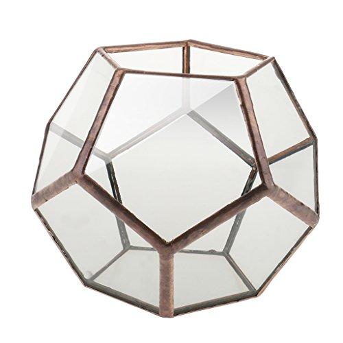 Terrario de Cristal Geométrica Caja Sobremesa Plantador 10x10x10cm Pl